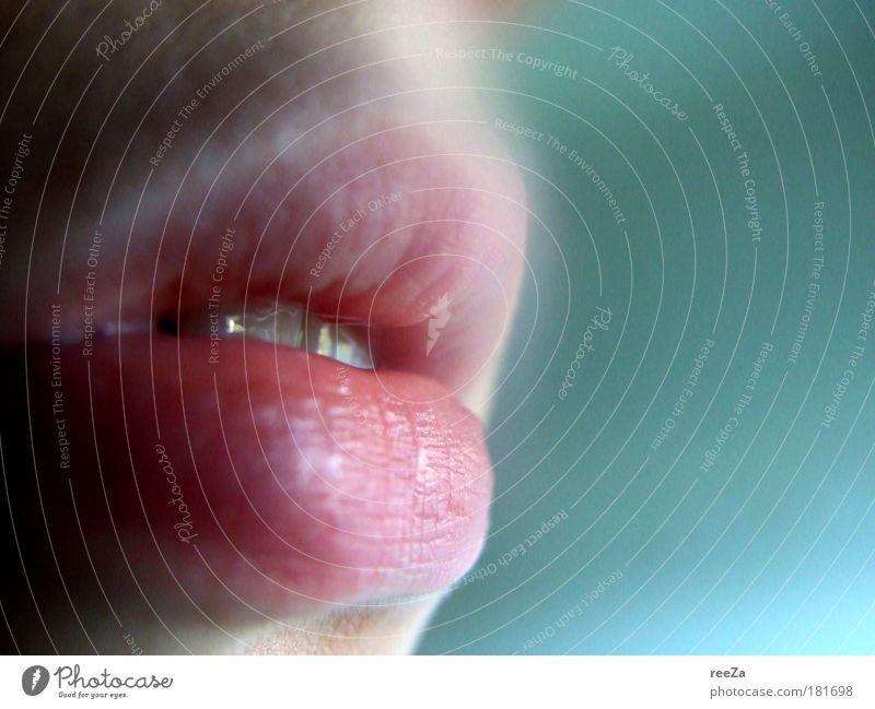 Gefühl. Frau Mensch Jugendliche blau Erwachsene feminin Gefühle Wärme träumen Mund rosa Haut natürlich Romantik weich Zähne