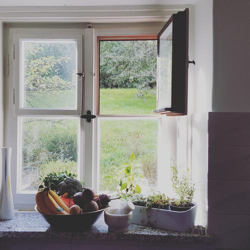 secret window Gesunde Ernährung Haus Fenster Wiese Herbst Gesundheit Garten Lebensmittel Wohnung Frucht Häusliches Leben Kräuter & Gewürze Küche Gemüse