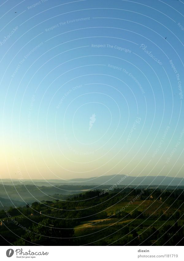 Arrivederci... Farbfoto Außenaufnahme Menschenleer Textfreiraum oben Textfreiraum Mitte Morgen Morgendämmerung Licht Schatten Kontrast Silhouette harmonisch