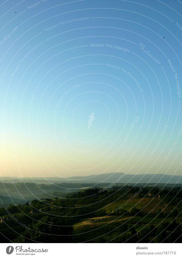 Arrivederci... Natur Himmel Baum Sommer Ferien & Urlaub & Reisen ruhig Ferne Wald Erholung Gras Freiheit Landschaft Zufriedenheit Feld Wetter Umwelt