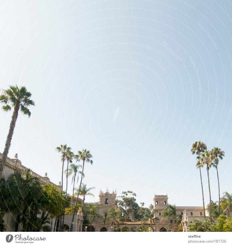 Rocky Balboa Park Farbfoto Gedeckte Farben Außenaufnahme Menschenleer Textfreiraum oben Tag Starke Tiefenschärfe Schönes Wetter Baum Palme San Diego Kalifornien