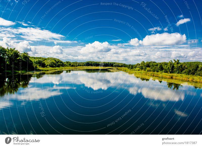 Nationalpark Donau Auen in Österreich Landschaft Auwald Wolken Wildnis Flußauen Natur Erholung Ferne Fluss Freizeit & Hobby Grundwasser Himmel lobau