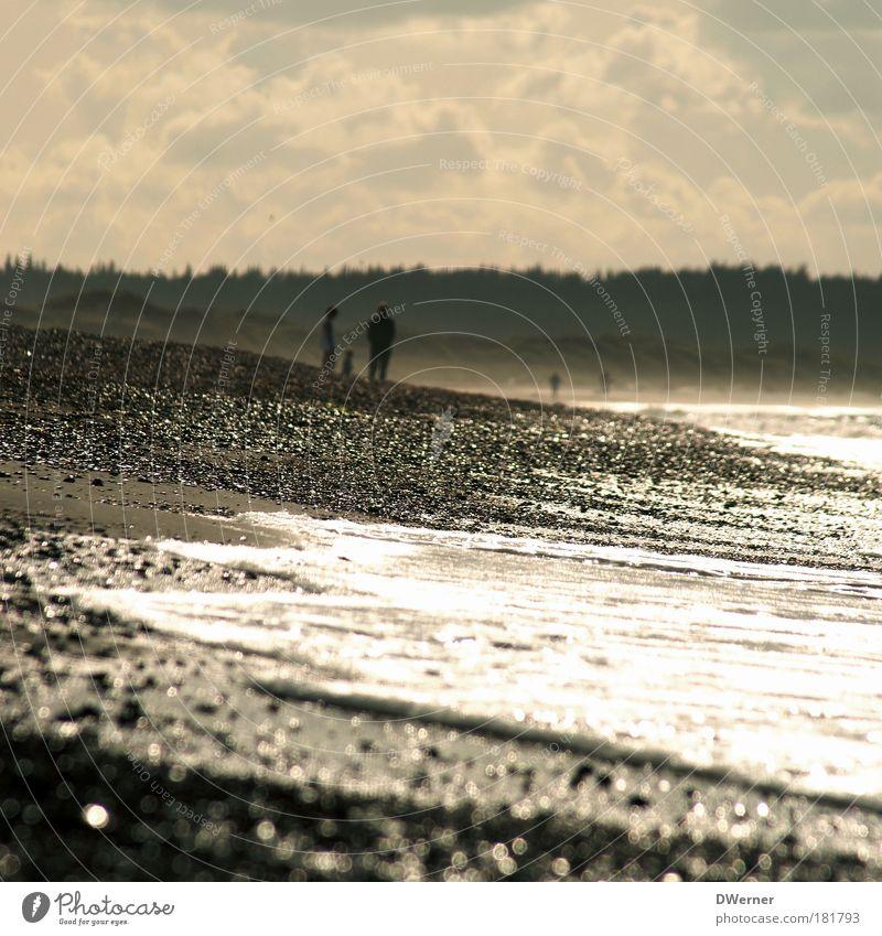 Jammerbucht in Dänemark Natur Meer Sommer Strand Ferien & Urlaub & Reisen ruhig Einsamkeit Freiheit Glück Familie & Verwandtschaft Sand Stimmung Küste Wellen