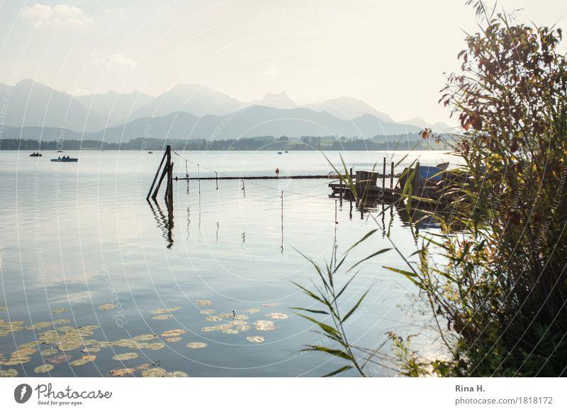 Stille Freizeit & Hobby Ferien & Urlaub & Reisen Natur Landschaft Herbst Schönes Wetter Sträucher Berge u. Gebirge See natürlich ruhig Erholung Zufriedenheit