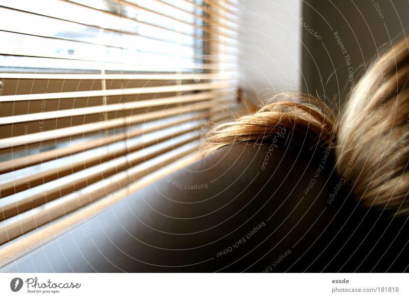 goldhaar Erholung feminin Fenster Holz Haare & Frisuren Zufriedenheit hell braun glänzend blond sitzen modern Frieden Häusliches Leben Sofa
