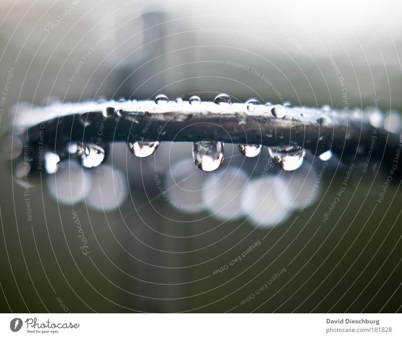 Ring of Tears Natur Wasser Umwelt Metall Regen Wassertropfen nass rund Tropfen Stahl Kurve silber feucht schlechtes Wetter Makroaufnahme Strukturen & Formen
