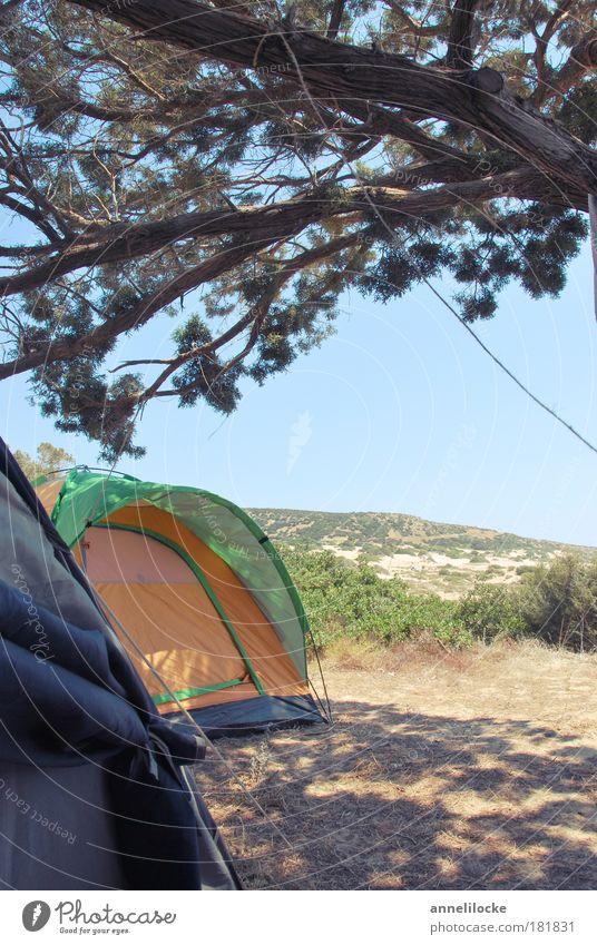 natural tenting Natur Baum Sonne Sommer Strand Ferien & Urlaub & Reisen ruhig Ferne Erholung Freiheit Wärme Sand Landschaft Umwelt frei Ausflug