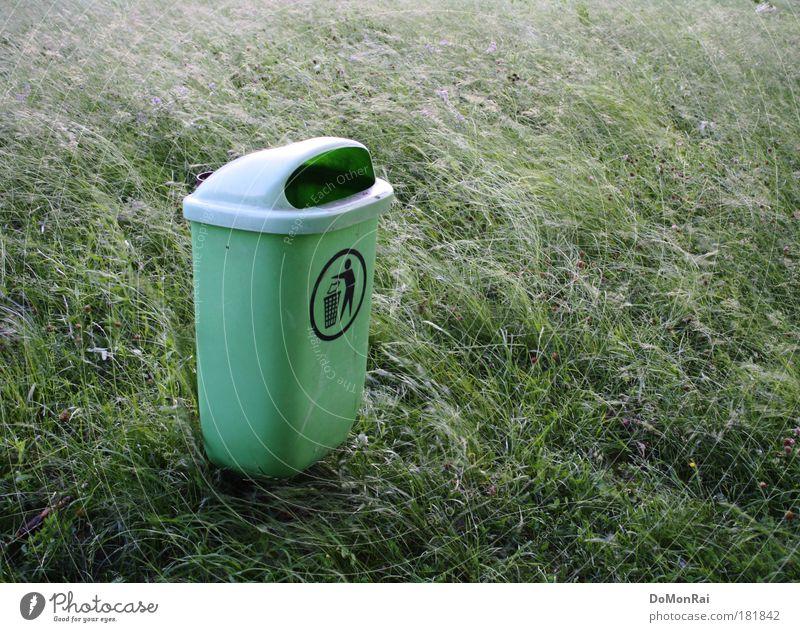 Unkraut Umwelt Natur Pflanze Wind Gras exotisch Wiese Müllbehälter Kunststoff Zeichen stehen fantastisch nachhaltig grün gewissenhaft Reinlichkeit Sauberkeit