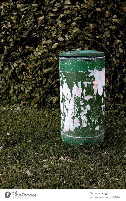 Last Müll standing Farbfoto Außenaufnahme Abend Müllbehälter gebrauchen Reinigen werfen dreckig fest hässlich trashig grün diszipliniert Ordnungsliebe