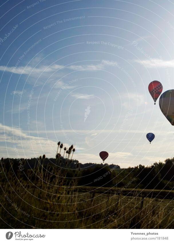 Unterwegs mit Freunden Himmel Sommer Wolken ruhig Wiese Freiheit Luft Stimmung Freizeit & Hobby hoch Ausflug frei rund Veranstaltung Ballone Ereignisse