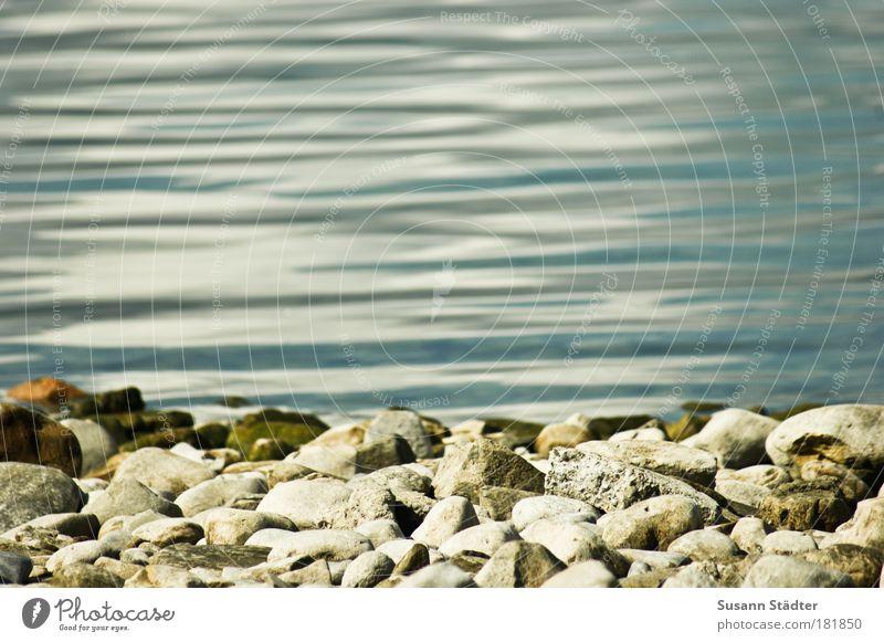 besteinte Bodenseekante Natur grün blau Sommer Strand Stein See Wellen Küste nass Wasser Flüssigkeit Seeufer beige Barfuß