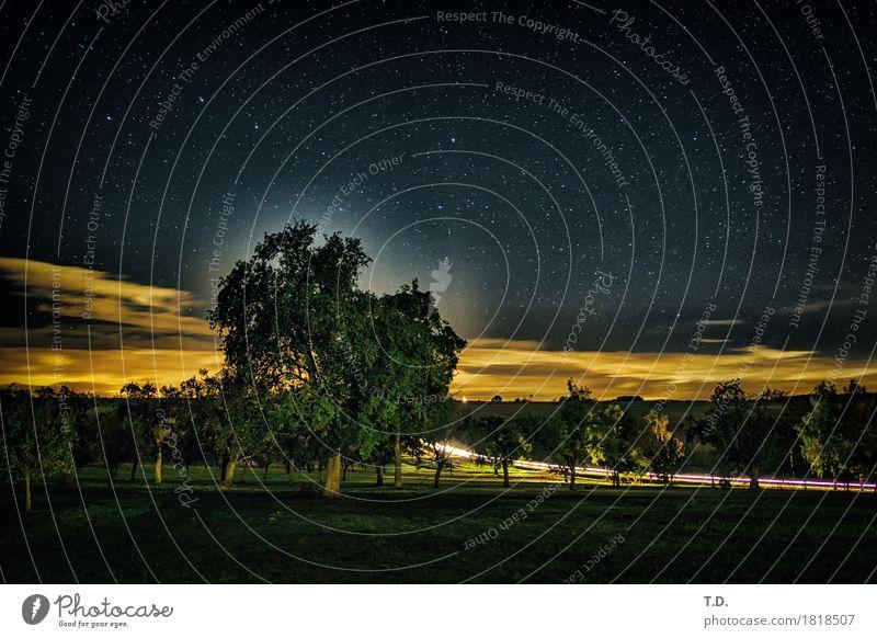 Da draußen Natur Wolken Nachthimmel Stern Baum Wiese Straße beobachten glänzend leuchten alt dunkel authentisch gigantisch Unendlichkeit blau gelb grün schwarz