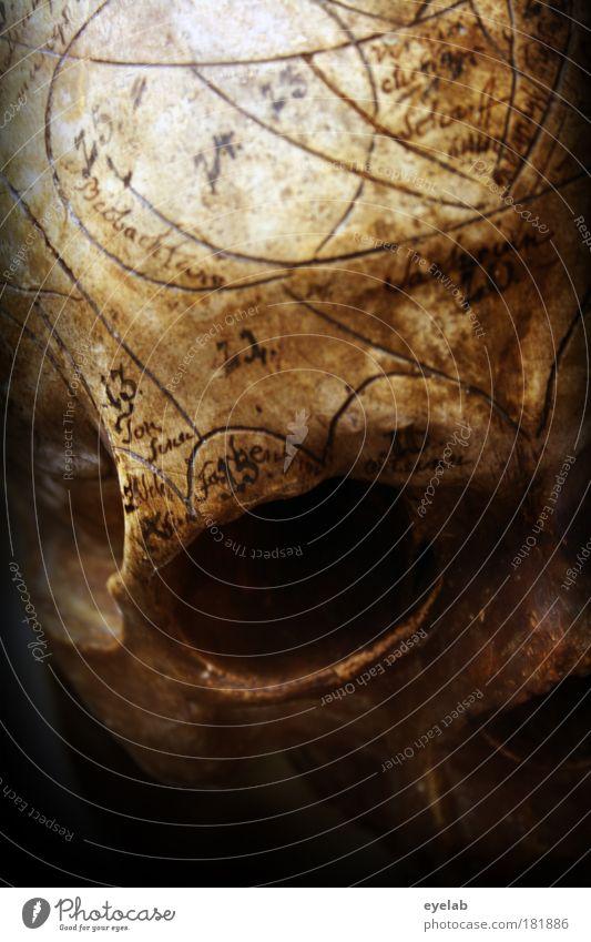 Tättowierungen post mortem sind übrigens der letzte Schrei ! Mensch alt Auge Tod Religion & Glaube braun Angst Schriftzeichen Gesundheitswesen Ziffern & Zahlen