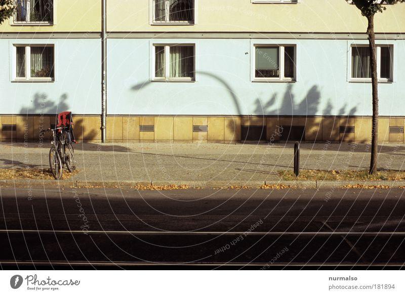 gleich neben an Stadt Baum Einsamkeit Haus Straße Fenster Wand Architektur Mauer Gebäude Wohnung gehen Fassade Verkehr modern einfach