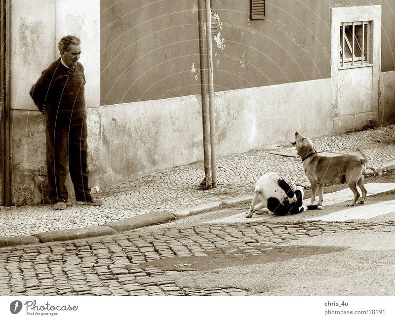Lissaboner Straßenszene Mann Portugal