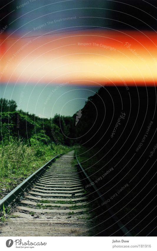 Nowhereland Umwelt Landschaft Baum Gras Sträucher Osteuropa Verkehr Verkehrswege Schienenverkehr Gleise Schienennetz Ferne Unendlichkeit Sehnsucht Heimweh
