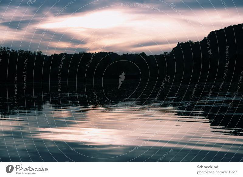 Idylle am kalten See Natur Wasser schön Himmel Baum Pflanze ruhig Ferne Erholung Freiheit träumen See Landschaft Zufriedenheit Küste