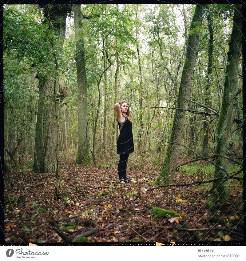 Waldina Natur Jugendliche Pflanze schön Junge Frau Baum Landschaft Erholung Blatt 18-30 Jahre Erwachsene Leben Gras außergewöhnlich frei