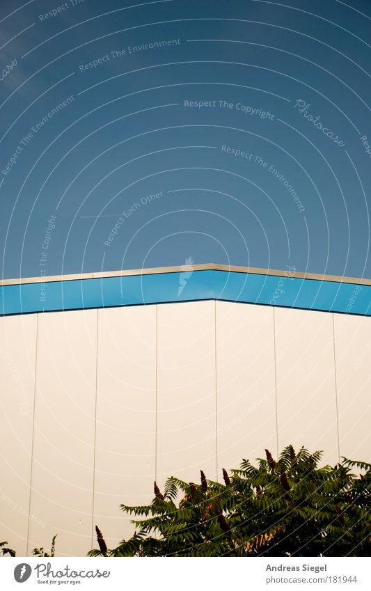 Halle (Dresden) Himmel blau weiß Baum Pflanze Haus Wand Architektur Gebäude Mauer Linie Fassade modern ästhetisch Industrie