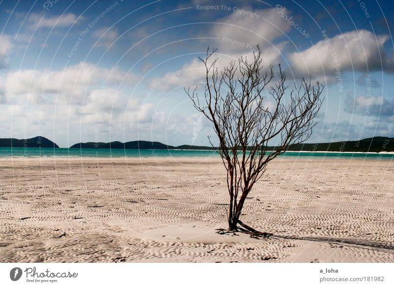 50 ist die hälfte von hundert Himmel Natur Wasser schön Ferien & Urlaub & Reisen Sommer Strand Meer Wolken Einsamkeit Ferne Landschaft Sand Luft Australien Linie