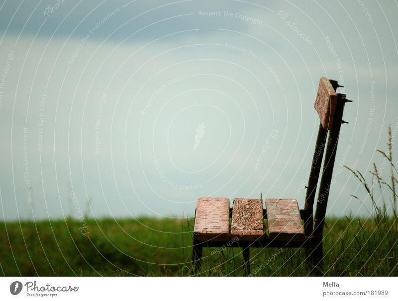Bankenkrise Himmel Natur alt ruhig Einsamkeit Wiese dunkel Umwelt Landschaft Holz grau Gras Traurigkeit Stimmung Park Feld