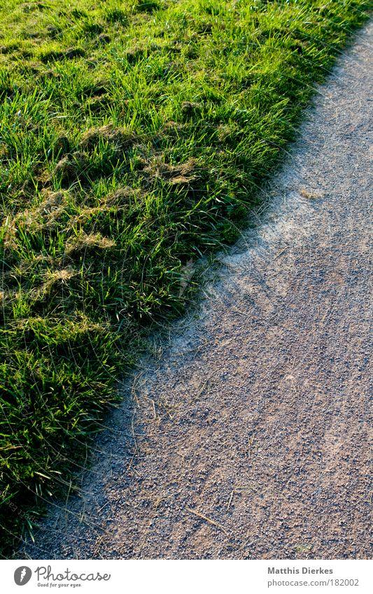 Grenze Pflanze Einsamkeit Wiese Garten Wege & Pfade Park Feld gehen Ende nachdenklich Paradies privat Stadtrand Grundstück