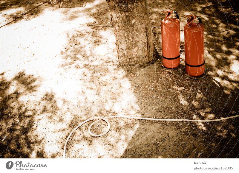 1 Baum, 1 Schlauch, 2 Feuerlöscher Gartenschlauch Wasser Farbfoto Schatten Sonne Textfreiraum links Menschenleer Brand Brandgefahr Löscher Baumstamm Boden