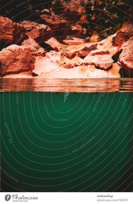 the green lagoon Natur Wasser grün Felsen Schwimmbad Holga tauchen außergewöhnlich Flüssigkeit Bucht Teich Unterwasseraufnahme Wasseroberfläche Querschnitt