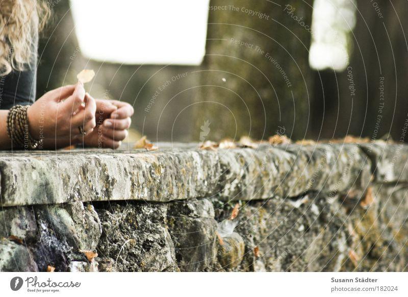 Goodbye Herbst . . . Frau Hand Baum Blatt Erwachsene gelb Haare & Frisuren Traurigkeit Mauer träumen braun Arme Haut Finger leuchten
