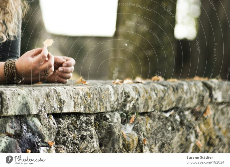 Goodbye Herbst . . . Frau Hand Baum Blatt Erwachsene gelb Herbst Haare & Frisuren Traurigkeit Mauer träumen braun Arme Haut Finger leuchten