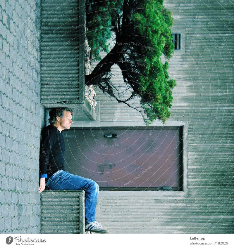 baumhaus Farbfoto Gedeckte Farben Außenaufnahme Experiment Textfreiraum rechts Tag Totale geschlossene Augen Lifestyle Stil Design Häusliches Leben Wohnung Haus
