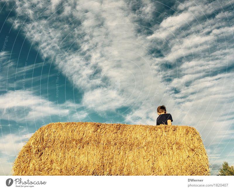 Strohspielplatz Mensch Kind Himmel Ferien & Urlaub & Reisen blau Sommer Sonne Freude Bewegung Junge Spielen Glück Freiheit hell springen Freizeit & Hobby