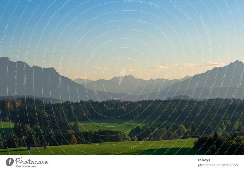 Allgäuer Idylle Natur Ferien & Urlaub & Reisen Sommer Landschaft Wald Umwelt Wiese Berge u. Gebirge Feld Klima Freizeit & Hobby Tourismus Ausflug Alpen Gipfel
