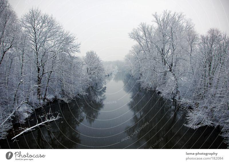 Leise rieselt der Schnee... Natur Wasser weiß Baum Winter ruhig Einsamkeit kalt Landschaft Eis Frost Fluss Klima Jahreszeiten frieren