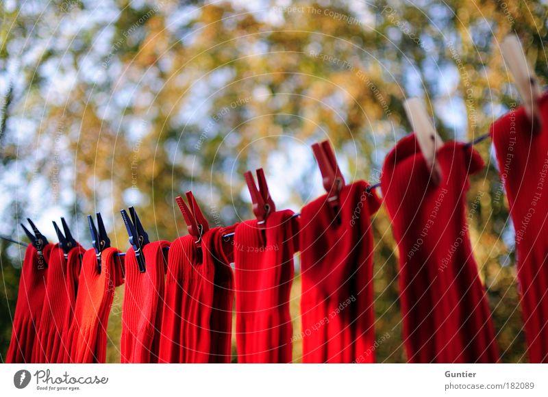 Rote Socken Himmel blau weiß Baum rot Herbst Seil Perspektive Kunststoff Strümpfe mehrfarbig Schatten links Politik & Staat Textfreiraum Klammer