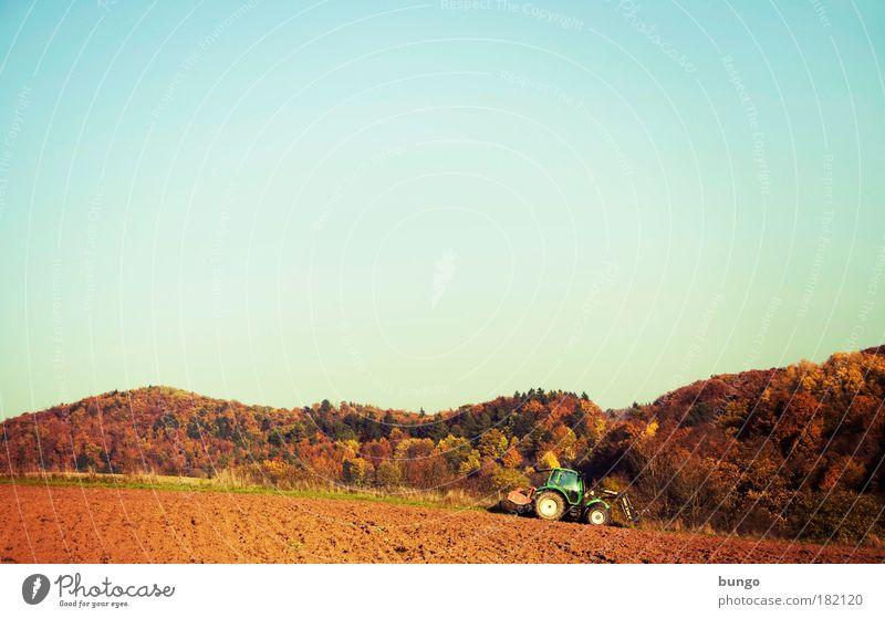 rusticus studiosior Farbfoto Außenaufnahme Tag Sonnenlicht Weitwinkel Landwirt Maschine Landwirtschaftliche Geräte Traktor Umwelt Natur Landschaft