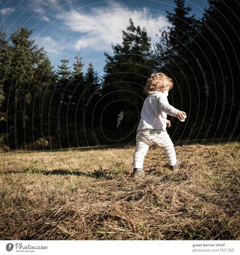 Herbstkind Mensch feminin Kind Kleinkind Mädchen Kindheit Leben 1 1-3 Jahre Umwelt Natur Landschaft Tier Wolken Schönes Wetter Feld Wald Haare & Frisuren