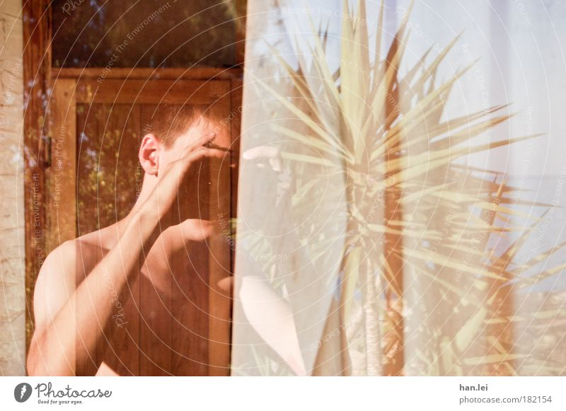 Spiegelung Selbstportrait Reflexion & Spiegelung Fensterscheibe Fotografieren Palme Hintergrundbild Textfreiraum rechts Arme Oberkörper Fotokamera Objektiv Tag