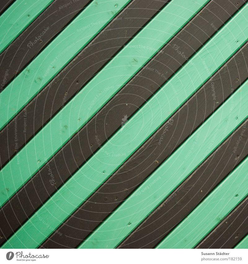 Nennen Sie ein schwarz-grünes Insekt! Innenarchitektur Bauwerk Gebäude Architektur Mauer Wand Fassade Garten Tür Dach Streifen Aufschwung Hoffnung Start Holz
