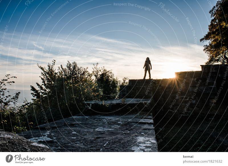 Conquered Lifestyle Stil Zufriedenheit Erholung ruhig Freizeit & Hobby Abenteuer Ferne Freiheit Mensch Erwachsene Leben 1 Himmel Wolken Schönes Wetter Baum