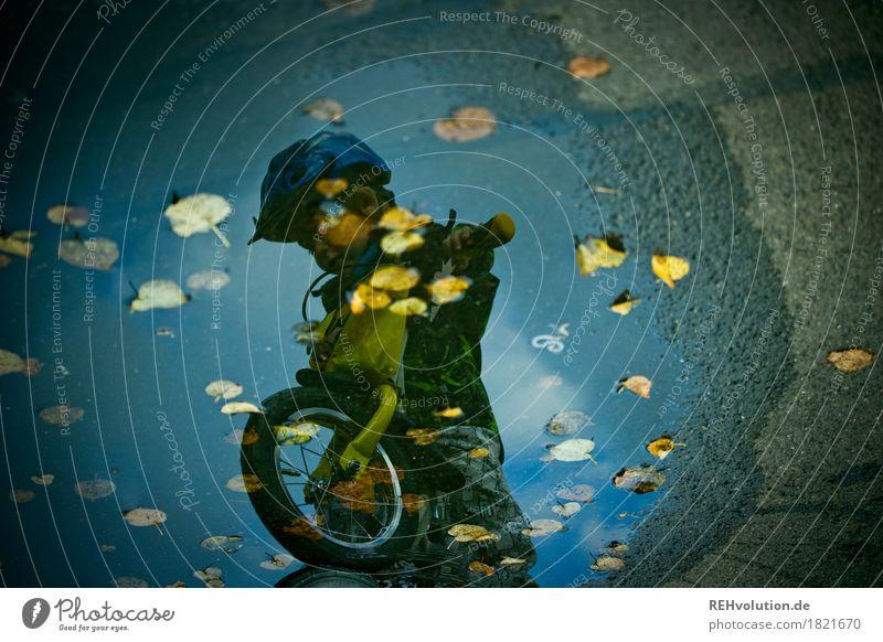 Laufradfahren im Herbst Mensch Kind Himmel Wasser Blatt Wolken Freude Bewegung Sport Junge Spielen klein Glück Regen maskulin