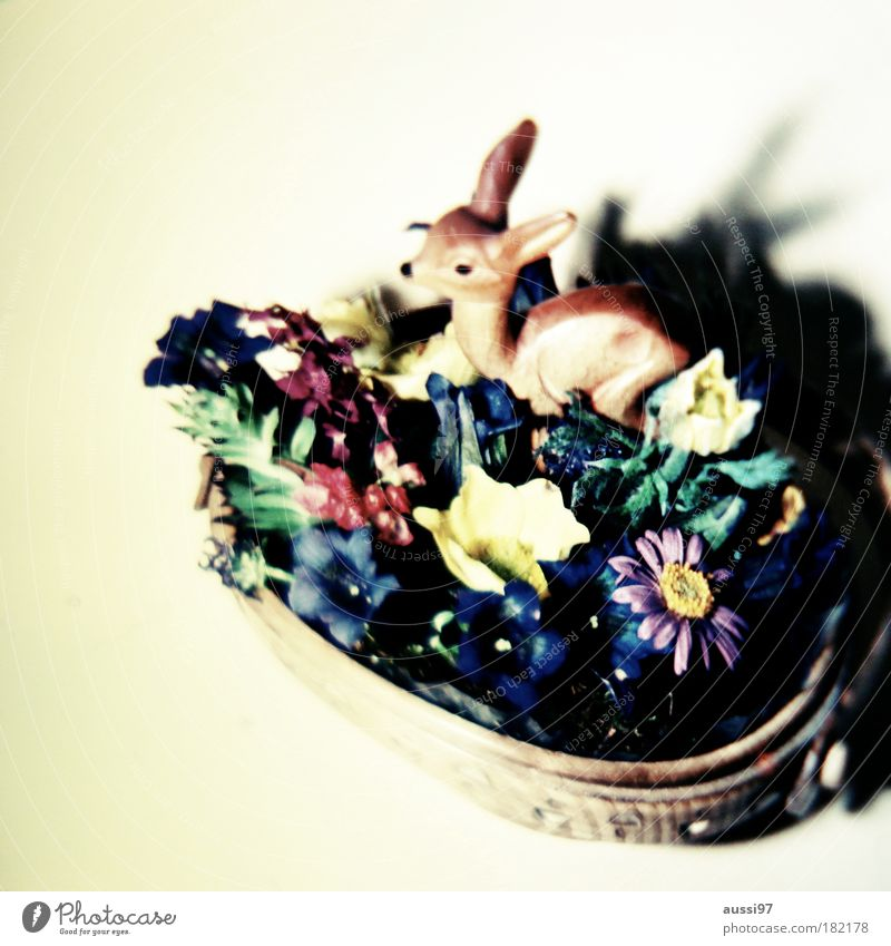 Bambi fand seine Bestimmung Reh Kitsch Tier Literatur Glückwünsche arrangiert Rehkitz