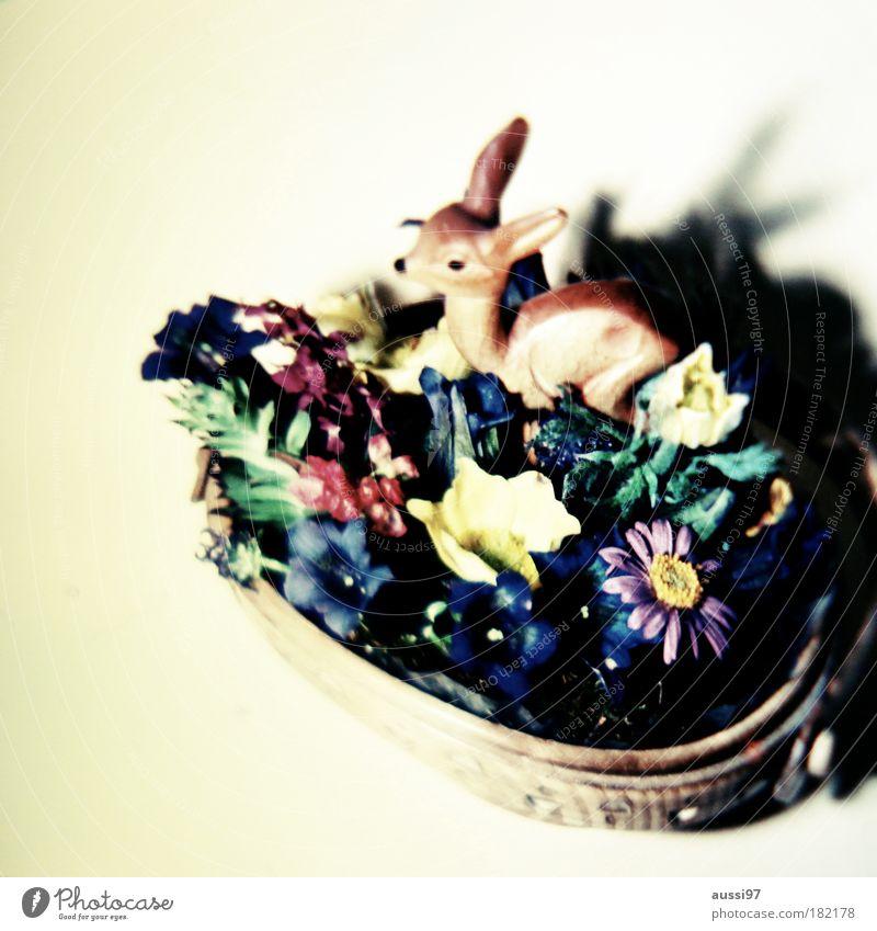 Bambi fand seine Bestimmung Reh Kitsch Tier Literatur Glückwünsche arrangiert Bambi Rehkitz