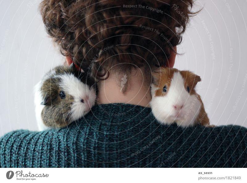 So trägt man Pelz Mensch grün Tier Liebe lustig klein braun Zusammensein Tierpaar Rücken niedlich weich Schutz Sicherheit Vertrauen Fell