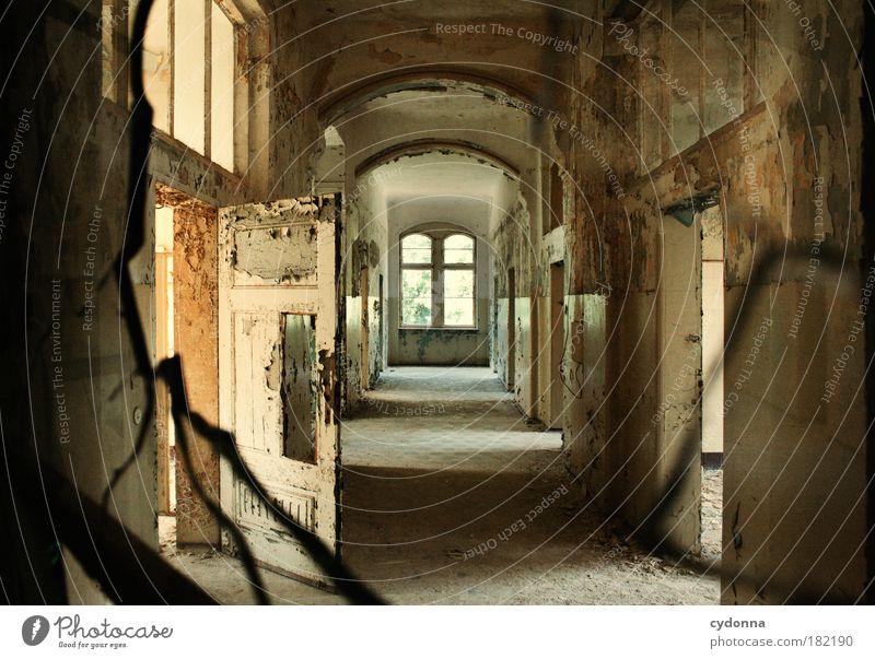 Zahn der Zeit Einsamkeit Haus ruhig Tod Fenster Leben Architektur Traurigkeit träumen Tür Raum Häusliches Leben Wandel & Veränderung Vergänglichkeit