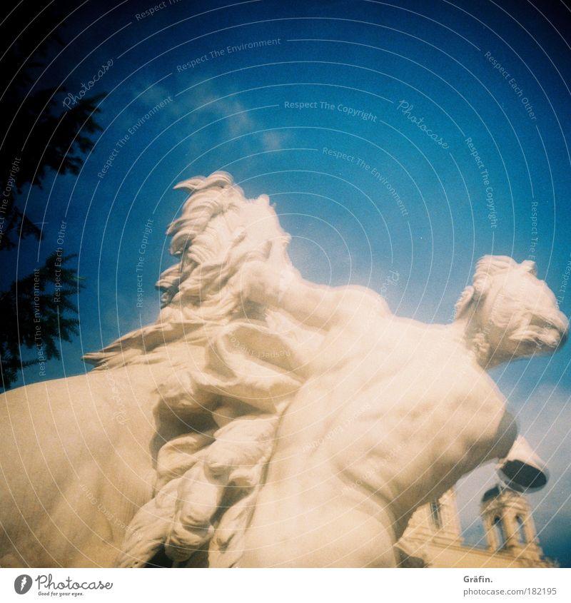 [WTCD] Weiße Kämpfer Außenaufnahme Unschärfe Museum Skulptur Stein kämpfen Statue Marmor Wien weiß Pferd Pouva Lomografie Himmel blau Bildhauerei Tag