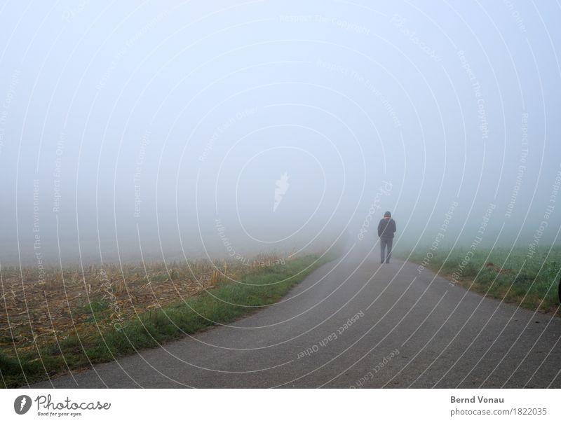 mal schauen Mensch 1 Umwelt Natur Feld Verkehrswege Straße Wege & Pfade Gefühle Stimmung Glaube gehen Zukunft Nebel Himmel grün blau Richtung Einsamkeit Kapuze