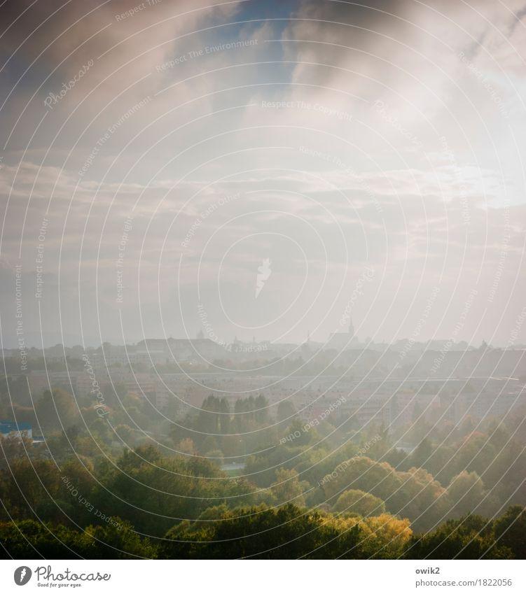 Weichbild Umwelt Natur Landschaft Himmel Wolken Horizont Klima Schönes Wetter Baum Wald Bautzen Lausitz Deutschland Kleinstadt Stadtrand bevölkert Haus Kirche