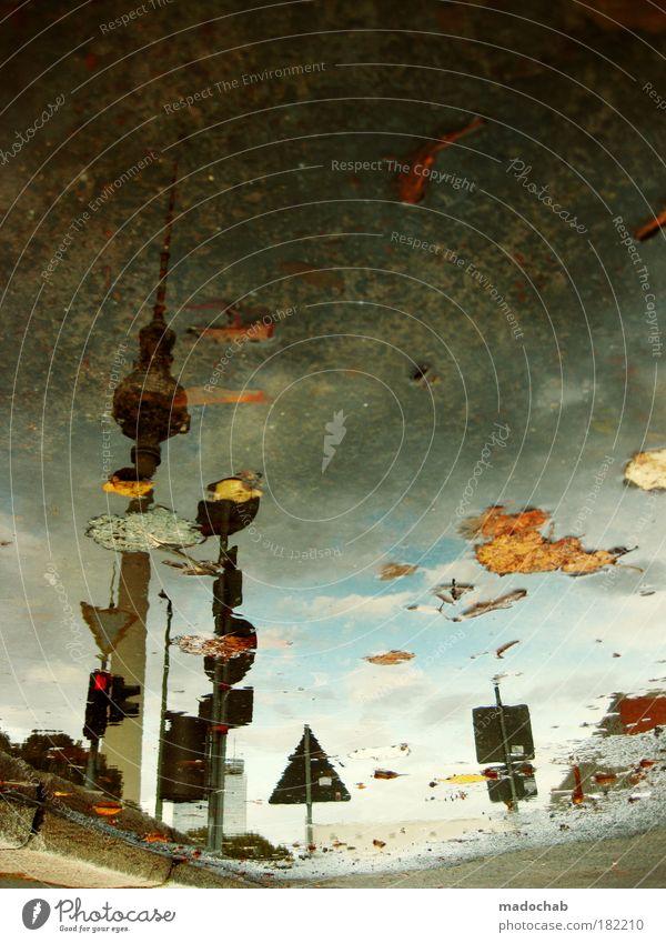 zusammen sind wir nass ! Wasser abstrakt Blatt Reflexion & Spiegelung Berlin Herbst träumen mehrfarbig Traurigkeit Kraft Architektur Straßenverkehr Wetter Umwelt Schilder & Markierungen