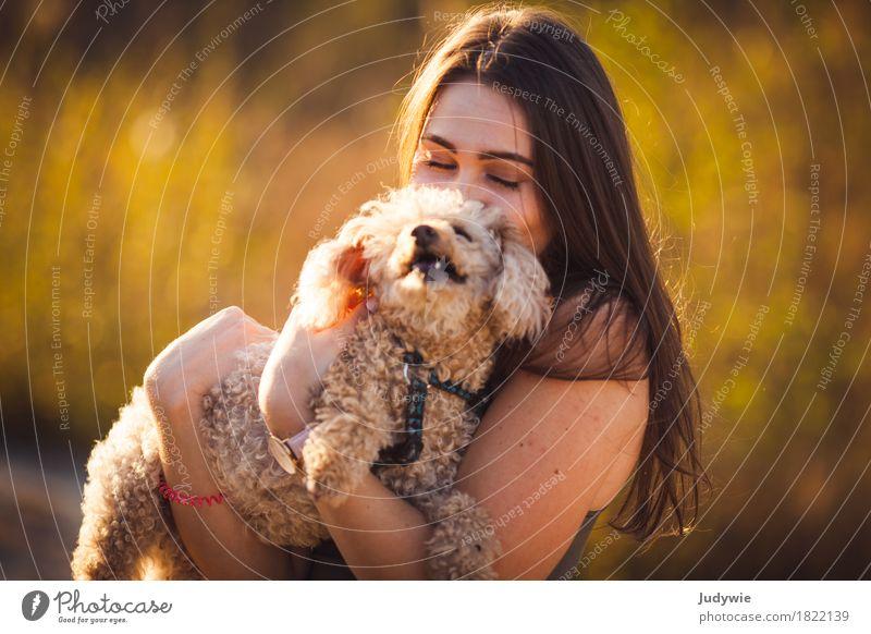 Tierliebe Mensch Frau Hund Natur Jugendliche Sommer Junge Frau Freude 18-30 Jahre Erwachsene Umwelt Liebe Herbst feminin Glück